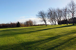 Fairwood_Park_fairway_4